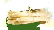 asperges-1